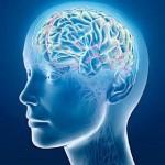 Beyin gel beni değiştir diyor! <<DEVAMI>>